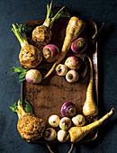 Celeriac, turnips and parsnips