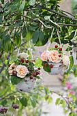 Kleine Sträuße aus Rosen und Walderdbeeren in Tassen an Zweig gehängt