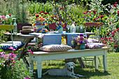 Etagere mit bunten Blüten und Aprikosen als Tischdeko, Hündin Hera liegt im Schatten unter Bank