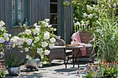 Sommerterrasse mit weißen Hortensien, Pfahlrohr und Eisenkraut