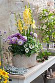 Gladiole, Dahlie und Zinnie im Korb