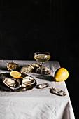 Frische Austern mit Zitrone und Sekt
