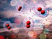 Oxygen depletion of the oceans,illustration