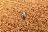 Aerial view of farmer standing in barley field