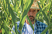 Portrait of corn farmer in field
