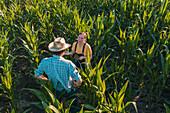 Agronomist advising corn farmer in field
