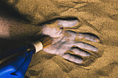 Forensic expert discovering body buried in sand