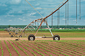 Pivot irrigation system in soybean and corn field