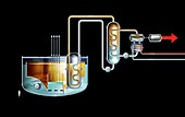 Sodium-cooled fast reactor, diagram