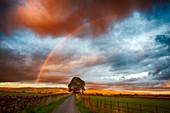 North Pennines, Cumbria, UK, at sunset with rainbow