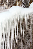Icicles on a frozen waterfall