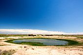 Water hole on the dry Lleida plains, Spain