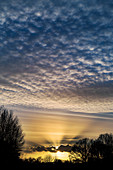 Altocumulus clouds near sunset with crepuscular rays