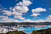 Cumulus humilis clouds over Wellington, New Zealand