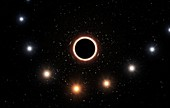 Star passing Milky Way's supermassive black hole