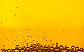 Bubbles in golden liquid