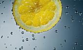 Lemon slice in sparkling water