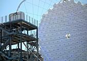 Large-Sized Telescope, LST-1, La Palma