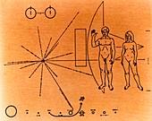 Pioneer plaque diagram