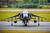 RAF Harrier in flight