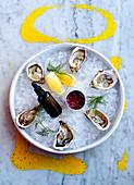Frische Austern und Granatapfelkerne auf Eis