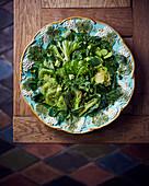 A green vegetable salad with kiwi