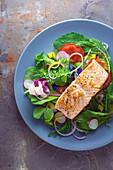 Bunter Salat mit Lachsfilet