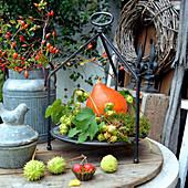 Herbstdeko mit Kürbis, Hagebutten, Hopfenranke und Kastanien