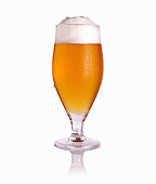 Glass of tasty light beer