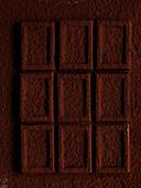 Schokoladenstücke mit Kakaopulver