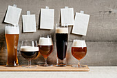 Five different types of beer in glasses