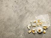 Knoblauchknolle und Knoblauchzehen auf Papier
