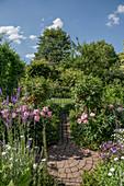 Bauerngarten mit Pfingstrosen und Johannisbeerstämmchen, runde Pflasterfläche