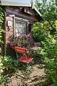 Sitzplatz auf Terrasse am Gartenhaus, Balkonkasten mit Petunien