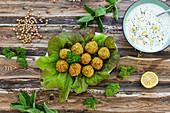 Falafel on salad with tzatziki