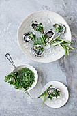 Oysters with cucumber granita and mint