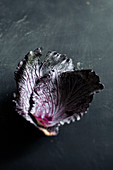 Red cabbage leaves