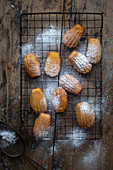 Madeleines with icing sugar on a wire rack