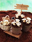 'Mushrooms in a pod' cake