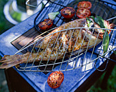 Grilled sea bream with tomatoes