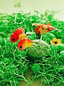 Grüne Schmetterlingsmuffins für den Kindergeburtstag