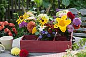 Blüten aus dem Bauerngarten: Dahlien, Zucchiniblüte, Sonnenbraut, Sonnenhut, Scheinsonnenhut, Fetthenne und Federborstengras