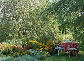 Kleiner Sitzplatz im Garten neben Staudenbeet und Apfelbaum