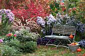 Sitzplatz im Herbstgarten mit Astern, Federborstengras, Korkleisten-Spindelstrauch und Dahlie
