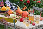 Herbstliche Tischdeko mit Kürbissen, Äpfeln, Hagebutten und Dahlienblüte, Dekanter und Gläser mit Apfelsaft