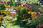 Kleiner Garten mit Dahlien, Sonnenhut, Scheinsonnenhut, Sonnenbraut und Zinnien am Gartenzaun