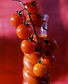 Vine tomatoes with a bottle of tomato juice in the background