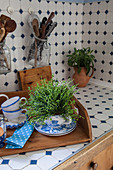 Herbs planted in teacup and kitchen utensils stored in swing-top jars