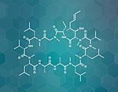 Cyclosporine immunosuppressant drug, molecular model