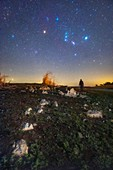 Orion and Betelgeuse in the night sky over countryside